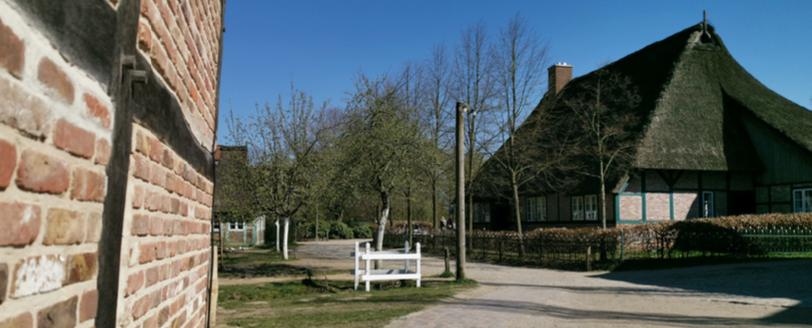 """Die Ausgabe 2019 der """"Rosengarten Aktuell"""" ist online"""